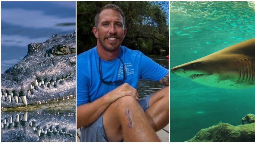 Hombre de Florida que en el pasado fue mordido por un caimán fue atacado ahora por un tiburón en los Cayos