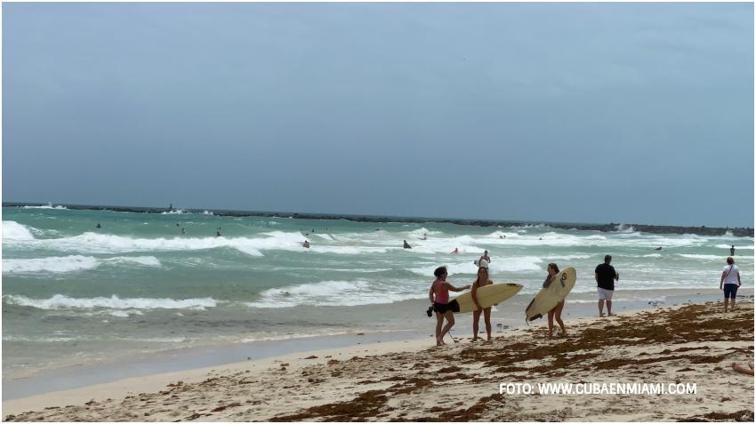 Emiten alerta ante la posibilidad de fuertes vientos en el sur de la Florida
