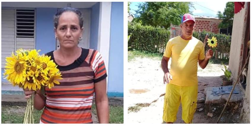 Arrestan a opositores al Oriente de Cuba por salir a las calles con un girasol en el Día de la Virgen de la Caridad del Cobre