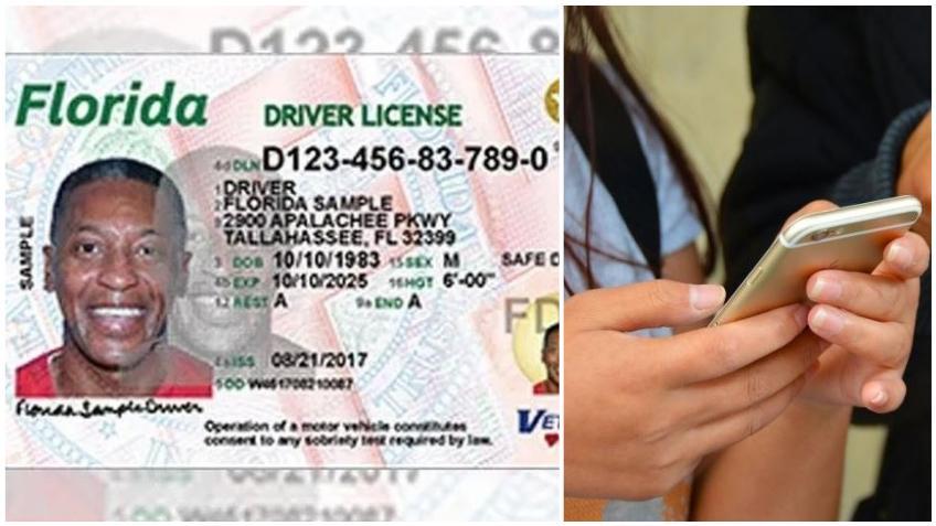 Florida proporcionará licencias de conducir móviles para mantener en los teléfonos celulares a partir del 2021