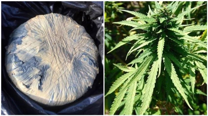 Hallan barril de marihuana flotando en los Cayos de la Florida