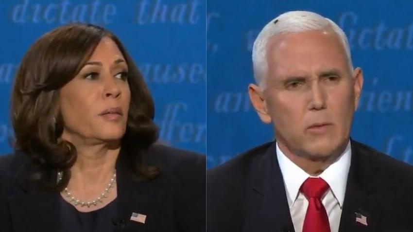 Una mosca se roba el show en el debate entre Mike Pence y Kamala Harris