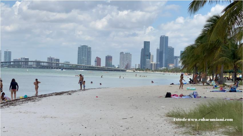 Prohíben nadar en la playa de los perros en Miami por bacteria en el agua