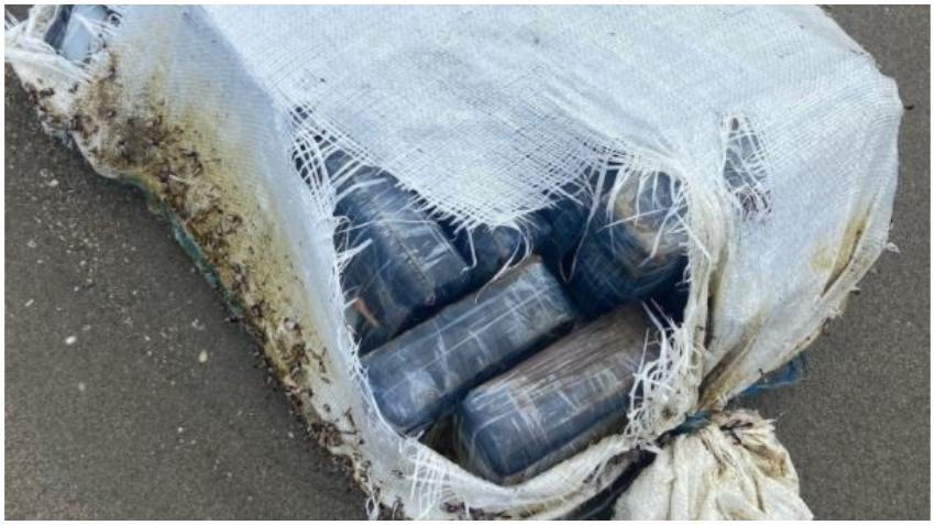 Bañistas encuentran 71 libras de cocaína que llegaron a la playa en Florida; tiene un valor en la calle de 1 millón de dólares