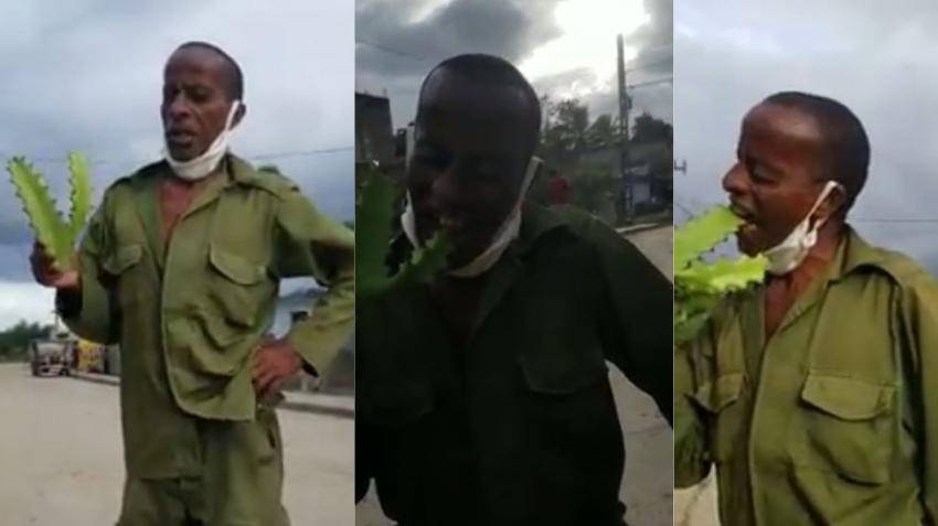 Cubano en Santiago de Cuba que come cactus se vuelve viral en redes sociales