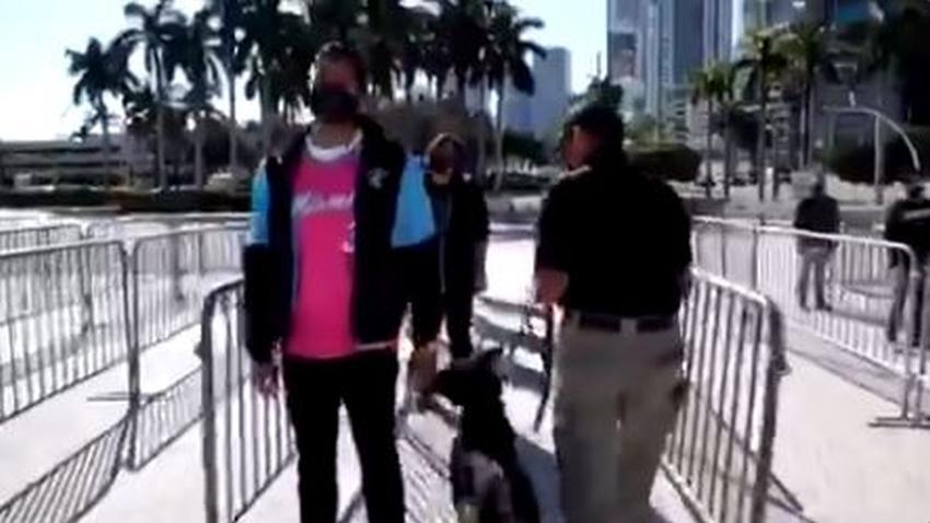 Miami Heat utilizará perros detectores de coronavirus para revisar a los fans que entren a ver los juegos
