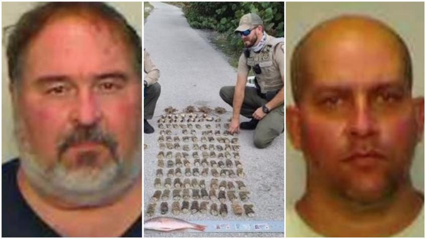 Arrestan a dos hombres en los Cayos de la Florida por pesca ilegal de langostas