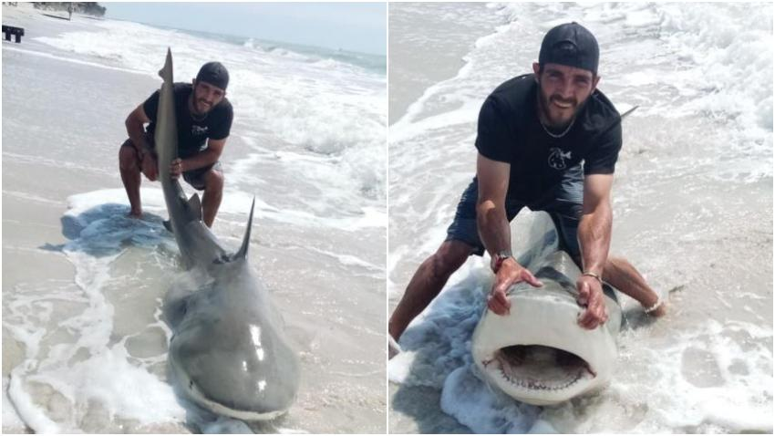 Pescadores capturan inmenso tiburón en una playa de Naples en Florida