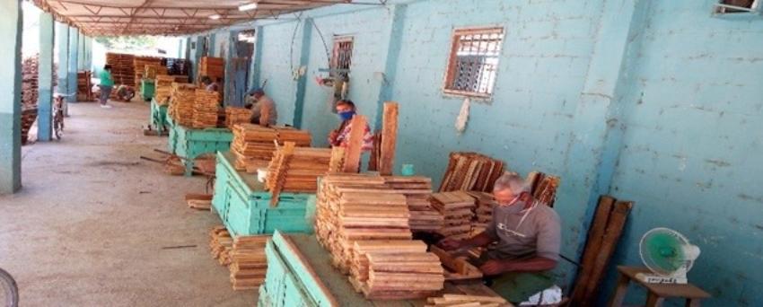 Comenzarán a vender madera en las tiendas en dólares en Cuba