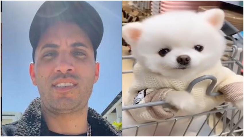 Cantante cubano Lenier Mesa recupera su perro luego de ser robado en una clínica veterinaria de Miami